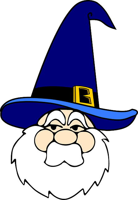 wizard-33616_640